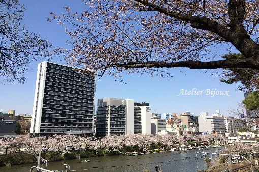 008-お堀の桜