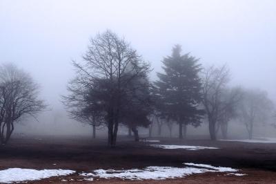 溶けていく雪と霧