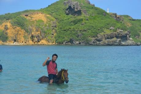 6海馬遊び