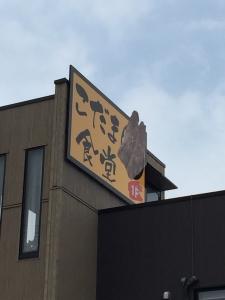 こだま食堂13