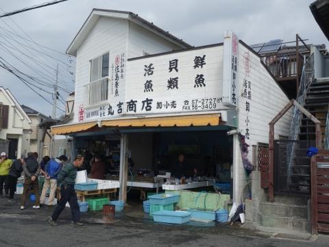 11佐島魚屋