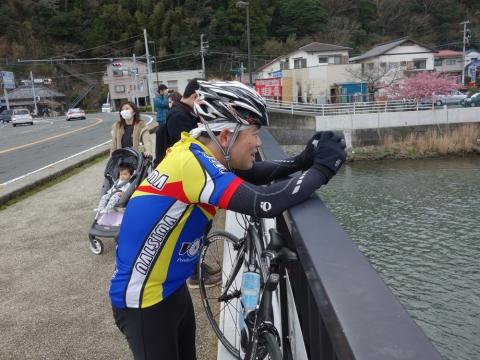 09河津桜KTY