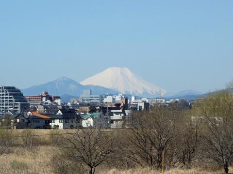 05多摩サイ立川からの富士山