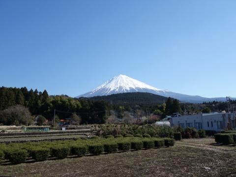 01富士山