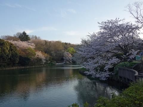 04三ッ池公園