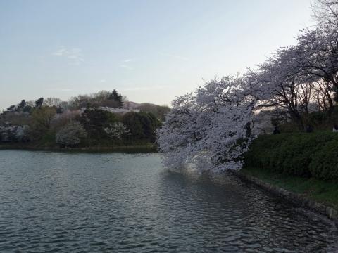 11三ッ池公園