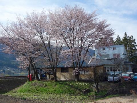 57木崎湖の春