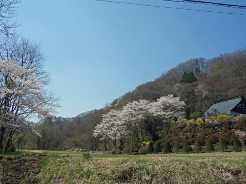 11嬬恋村の寺