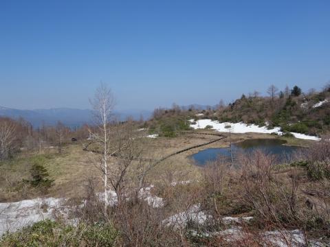 03白根山へ:湿原