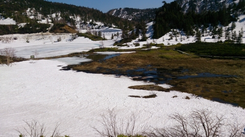 13白根山:弓池湿原