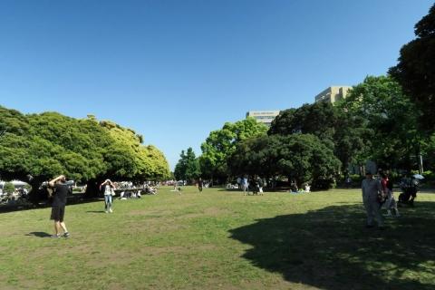 19みなとみらい:山下公園