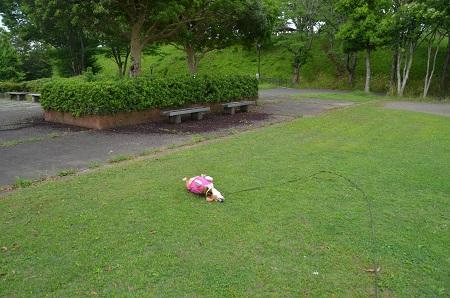 20150628外小代公園06