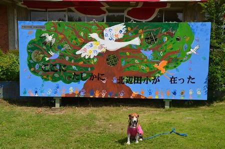 20150628北辺田小学校16