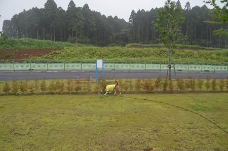 20150702東の原公園28
