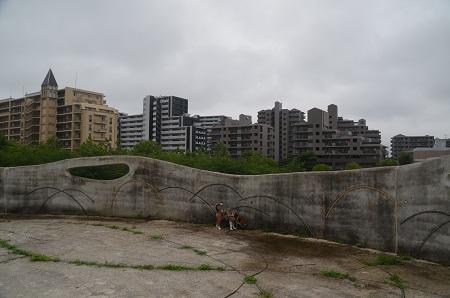 20150707草深公園12