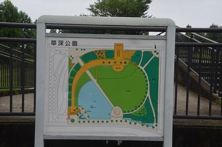 20150707草深公園23