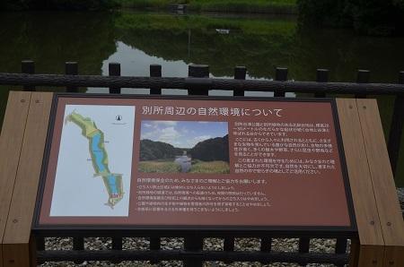 20150707別所谷津公園12