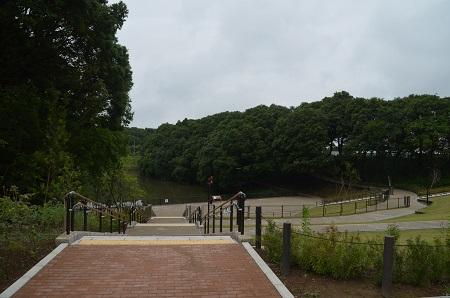 20150707別所谷津公園08