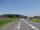 のどかな田舎道を走る