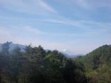 ルート上から見える富士山