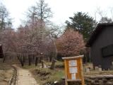 笠取小屋を通過