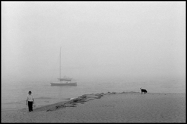 mist-blog.jpg