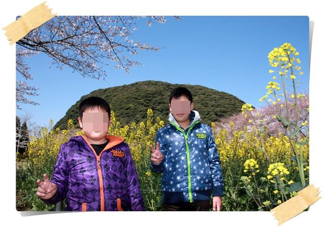 丸山公園4
