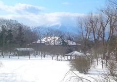冬版12-28 (1-0-1)_600