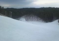スキー大会 (1)_600