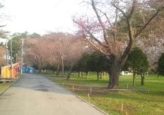 芦野公園4-18 (1)_600