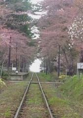 芦野公園4-18 (10)_600