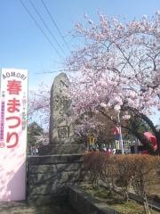 桜歩き4-19 (5)_600