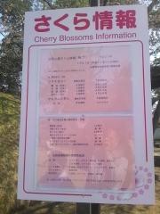 弘前公園4-21 (1-2)
