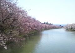 弘前公園4-21 (6)_600
