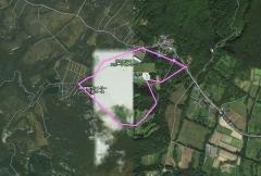 GPS桜並木_600