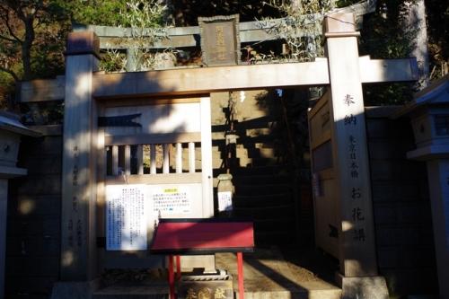 11oyama5tohaimon.jpg