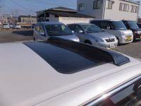 激レア車 (2)