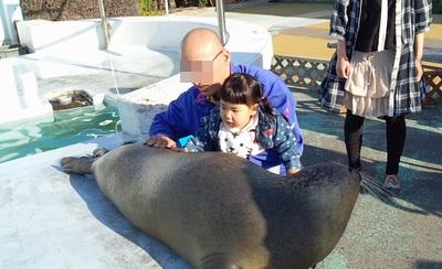 20141107水族館⑥
