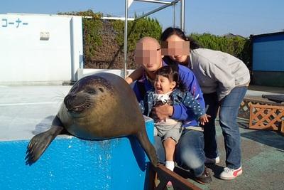 20141107水族館⑨