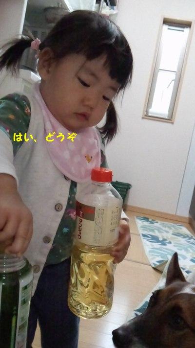 20141130調味料で遊ぶ②