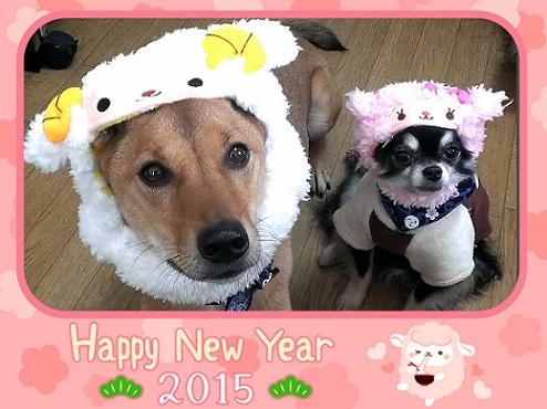 2015-01-03-05-50-12_deco.jpg