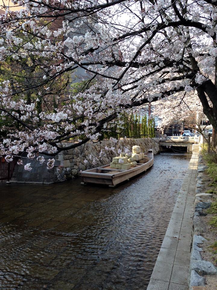 takasegawa_2015040122235337f.jpg