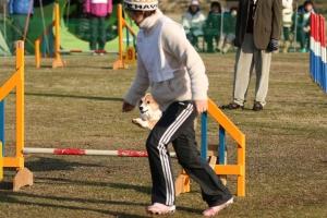 2015hukuyamama 54811_R