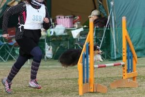 2015hukuyamama 422011_R