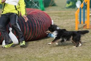 2015hukuyamama 379811_R