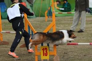 2015hukuyamama 138511_R