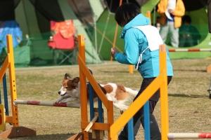 2015hukuyamama 131911_R