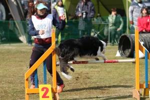 2015hukuyamama 254011_R