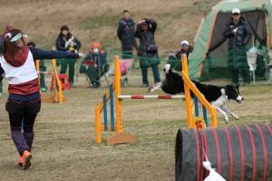 2015hukuyamama 237811_R