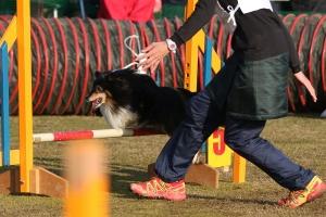 2015hukuyamama 57411_R